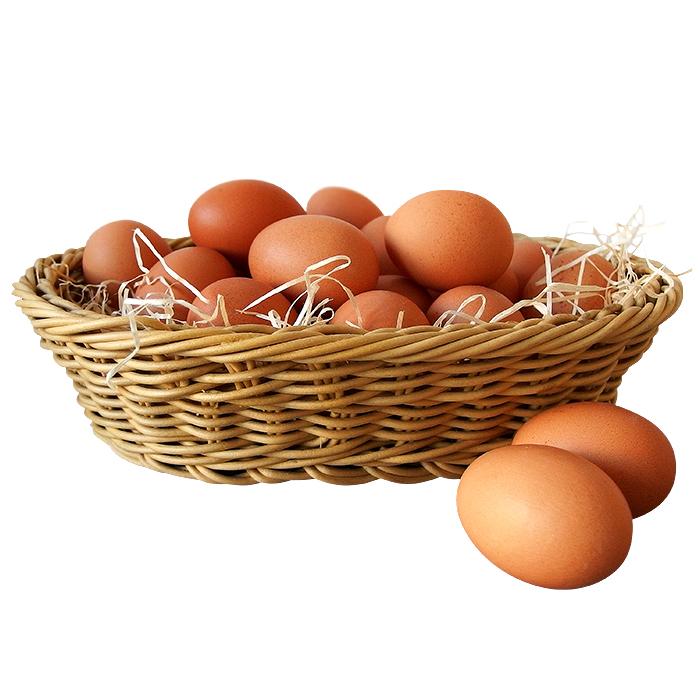 Vajíčka zJežkova statku