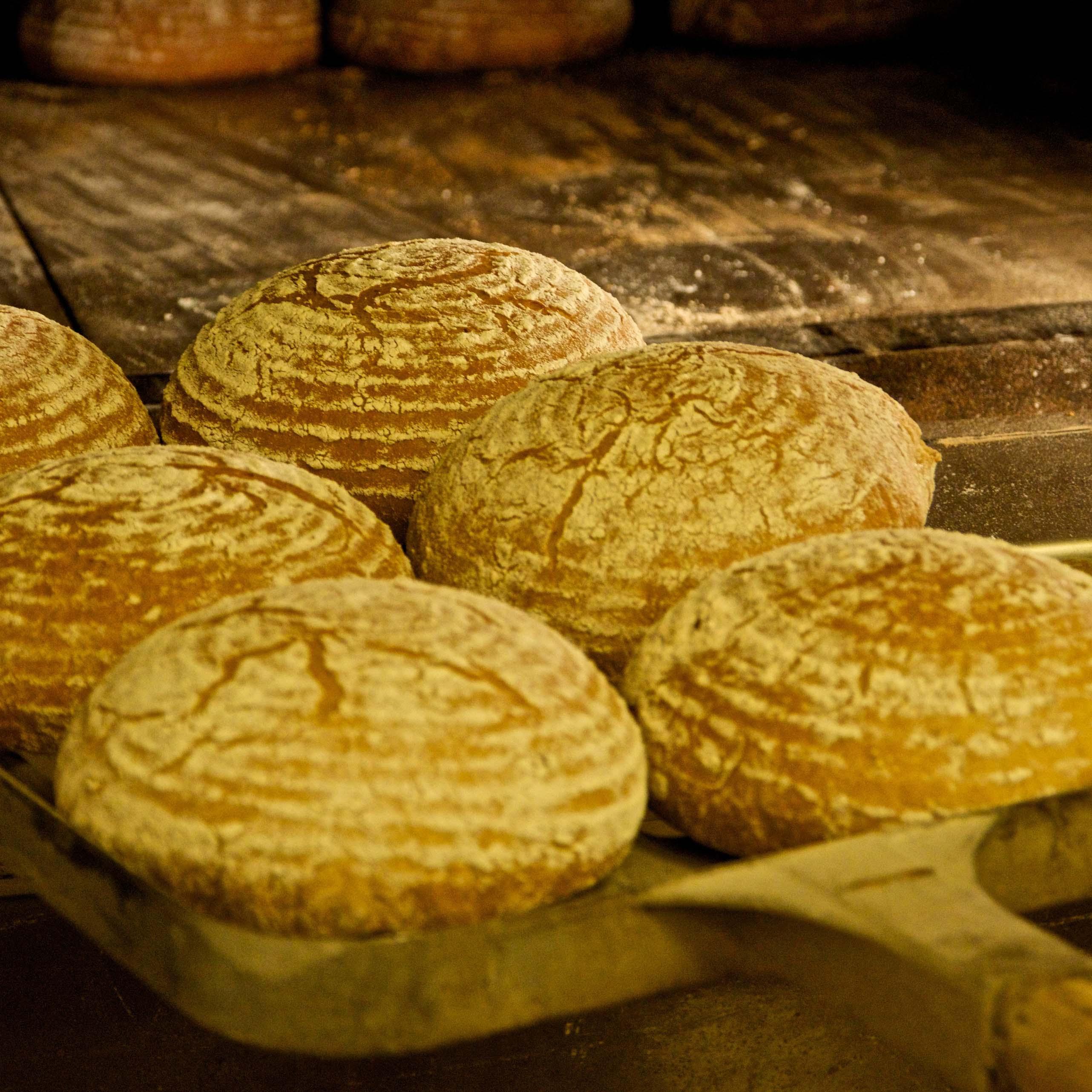 Chlebový víkend vKredenci – kvásek jako dárek