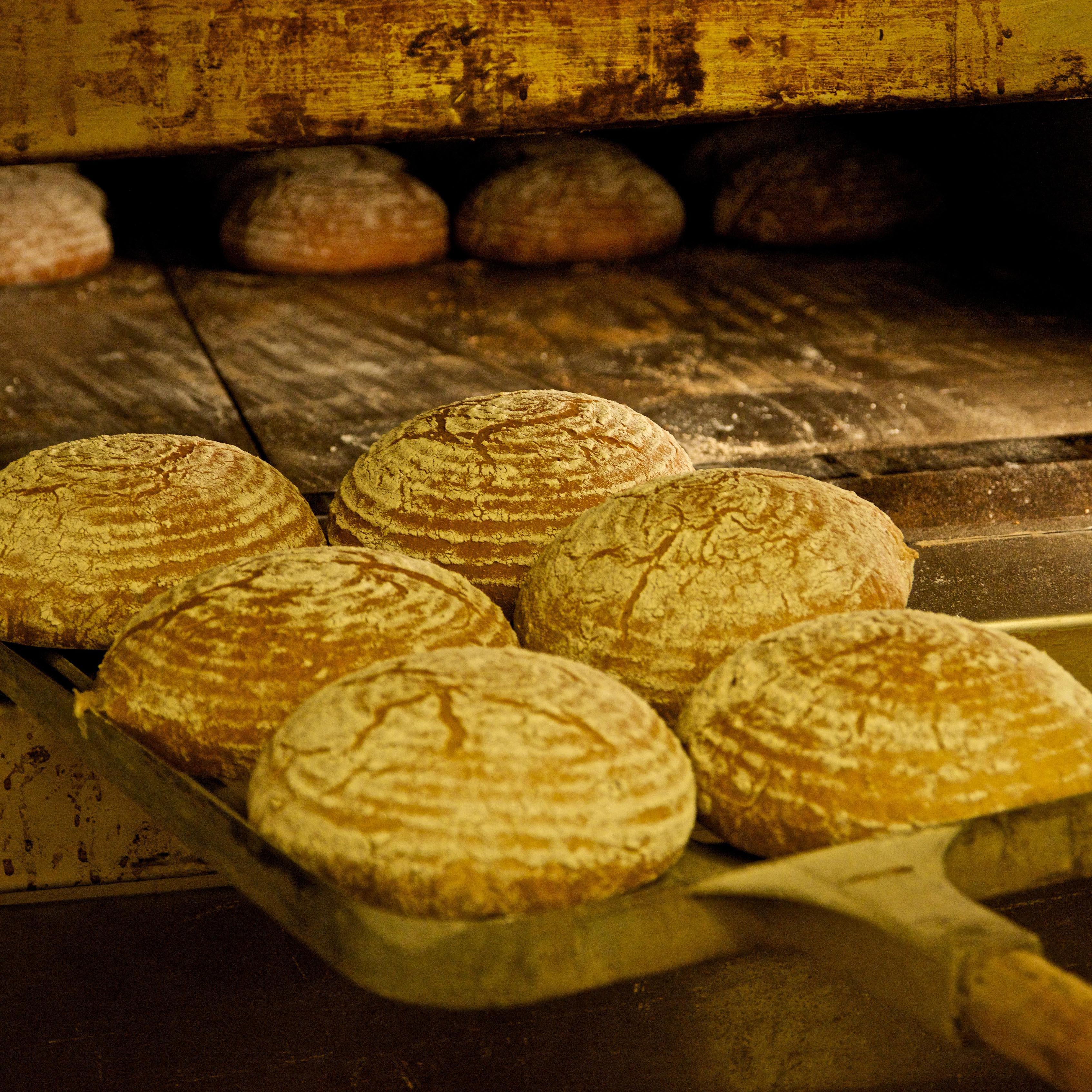 Deset druhů chlebů zpekárny Kredenc