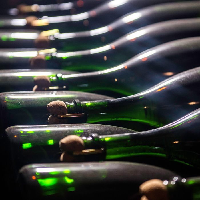 Degustace: Champagne na vánoční isilvestrovský stůl